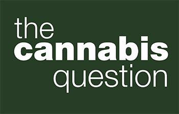 cannabis graphic for web
